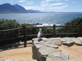 Hermanus Scenery